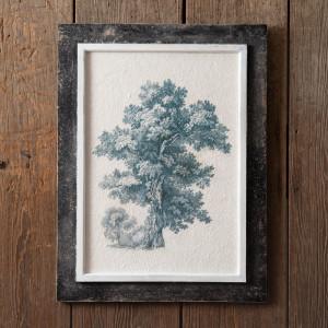 English Oak Vintage Tree Wall Art
