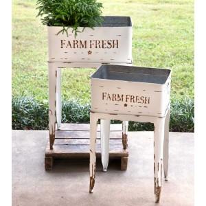 Farm Fresh White Garden Stands