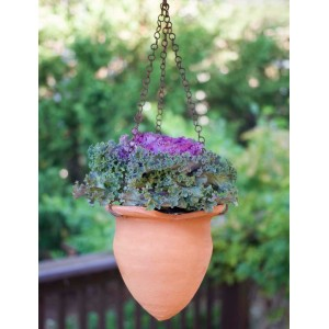 Flower Bud Hanging Terra Cotta Pot