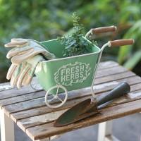 Fresh Herbs Cart