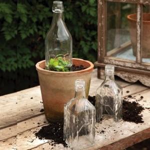 Glass Bottle Cloche Set of 3