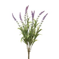 Lavender Bush Spray - Box of 4