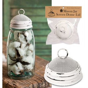 Mason Jar Screen Dome Lid - White
