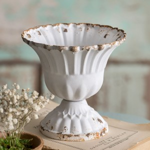 Medium Scalloped Cup