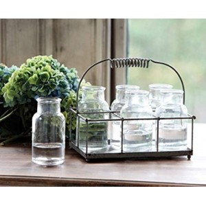 Milk Bottle Flower Holder (7 pcs)