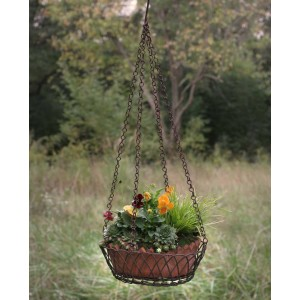 Oval Hanging Wire Basket with Terra Cotta Pot