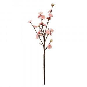 Peach Blossom Spray - Box of 2