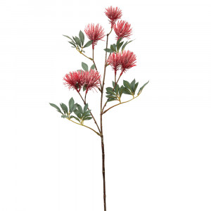 Red Thistle Spray - Box of 2