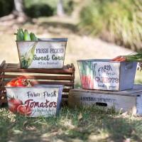 Set of Three Rectangular Produce Bins