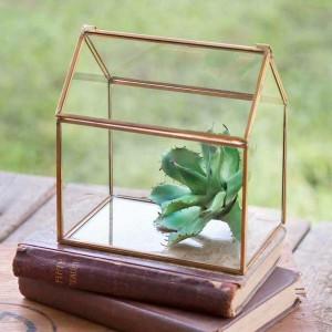 Small Glass House Tabletop Terraruim