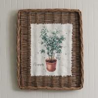 Weeping Fig Wall Basket